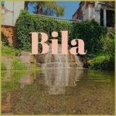 Bila by Various Artists