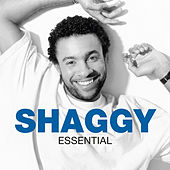 Essential by Shaggy