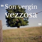 Son vergin vezzosa by Various Artists