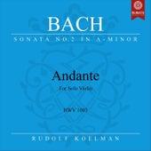 Violin Sonata No. 2 in A Minor, BWV 1003: III. Andante by Rudolf Koelman