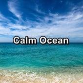 Calm Ocean by Deep Sleep Relaxation