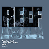 The Collections by Reef