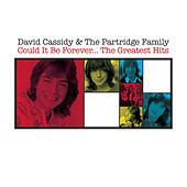 Could It Be Forever - The Greatest Hits by David Cassidy