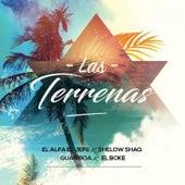 Las Terrenas (feat. El Boke) de El Alfa