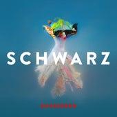 Sunscreen by Schwarz
