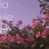 la vie en rose (cover) by Nails