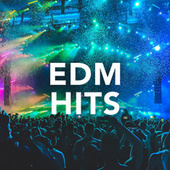 EDM Hits by Various Artists