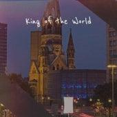King of the World de Various Artists