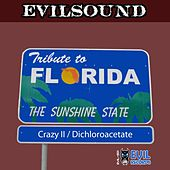 Tribute To Florida de Evilsound