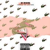 Tropa do Jacaré (feat. Rafinha da ZS, Kavi, Jetter & Biel) by DJ Richa