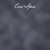 Cara Sposa von Various Artists