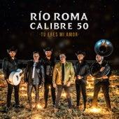 Tú Eres Mi Amor (Versión Regional Mexicana) de Río Roma