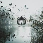 Bengalo (Dario D'Attis Remix) fra Oliver Schories
