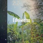 Edelweiss von Various Artists
