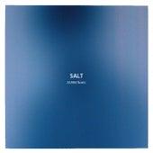 Salt (EMBRZ Remix) van Haux