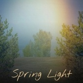 Spring Light by Various Artists