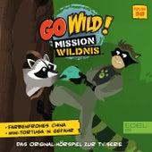 Folge 38: Farbenfrohes China / Mini Tortuga in Gefahr (Das Original Hörspiel zur TV-Serie) von Go Wild! - Mission Wildnis