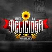 Hoy Empieza Mi Tristeza by Mich. Banda La Deliciosa de Jungapeo