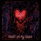 Heart On My Sleeve by Pueblo