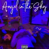 Angel in the Sky de Don Rich
