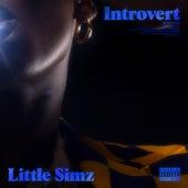Introvert de Little Simz