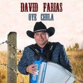 Oye Chula de David Farias