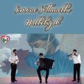 Hallelujah von Simone Sottanella