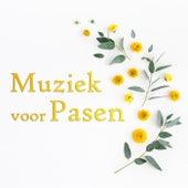 Muziek voor Pasen von Various Artists