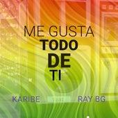Me Gusta Todo de Ti by Karibe Orquesta
