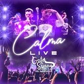 Calma (Live) by Gato Swing