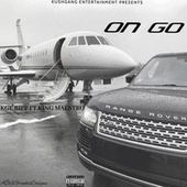 On Go by Maestro