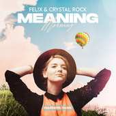 Meaning by Fel X