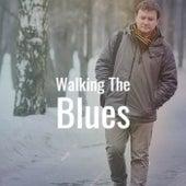 Walking The Blues de Various Artists