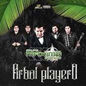 Árbol Playero by Grupo Maximo Grado