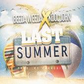 Last Summer by Beeda Weeda
