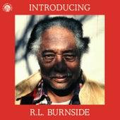 Introducing R.L. Burnside de R.L. Burnside