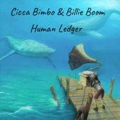 Human Ledger de Cicca Bimbo