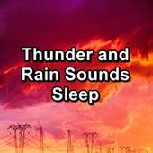 Thunder and Rain Sounds Sleep by White Noise Baby Sleep (1)