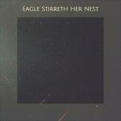 Eagle Stirreth Her Nest de Various Artists