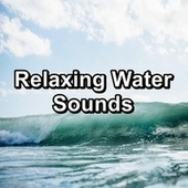 Relaxing Water Sounds de Ocean Waves (1)