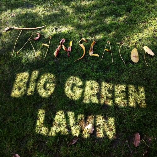 Big Green Lawn by Translator