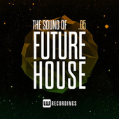 The Sound Of Future House, Vol. 05 di Various Artists