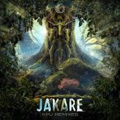Apu Remixes von Jakare