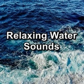 Relaxing Water Sounds by Echoes of Nature