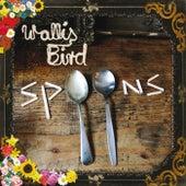 Spoons by Wallis Bird