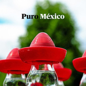 Puro México by Various Artists