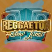 Reggaeton Slow Jams de Various Artists