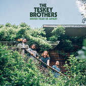 Never Tear Us Apart de The Teskey Brothers
