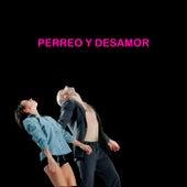 Perreo y Desamor de Various Artists