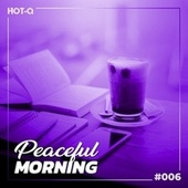 Peaceful Morning 006 by Various Artists